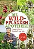 Die Wildpflanzen-Apotheke: Essbare Pflanzen, die nähren und heilen (Medizin aus der Natur)
