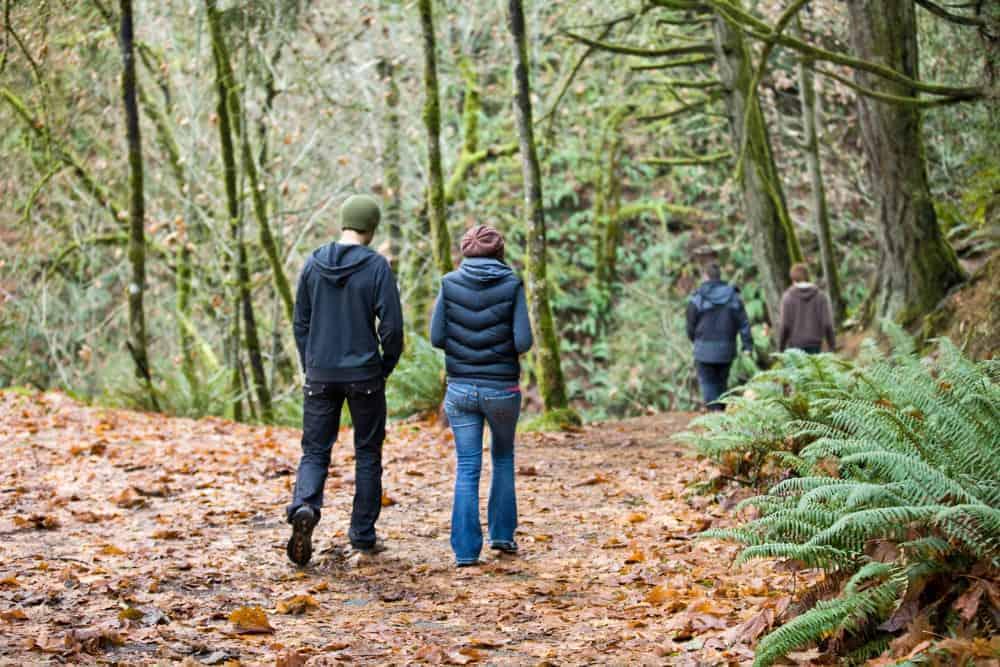 Spaziergang im Wald zwei Personen im Herbstlaub