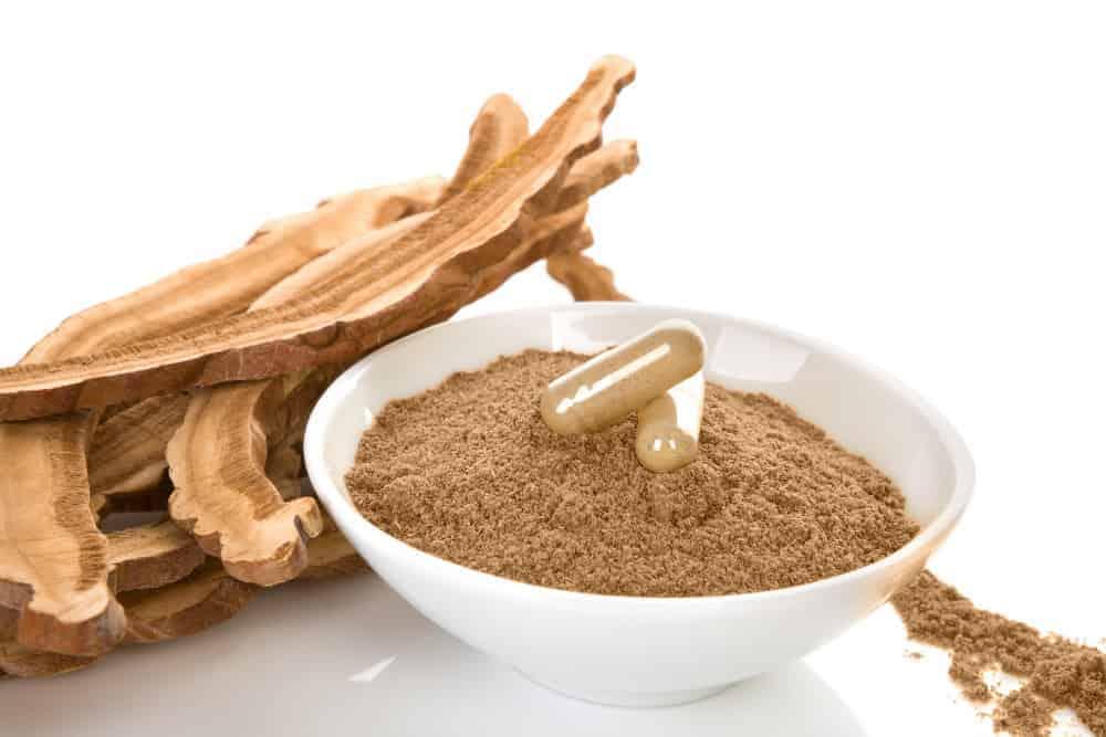Vitalpilz Extrakte Reishi Pulver und Extrakt